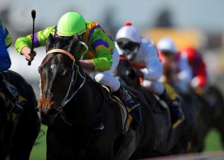 VietBet Horse Racing Bonus   Visit the Racebook Today!